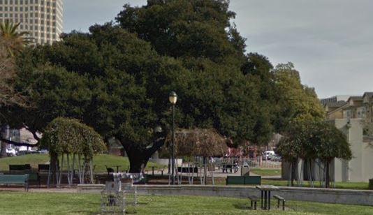 Oakland Designated Landmark 90: Lafayette Square (Image B) Image