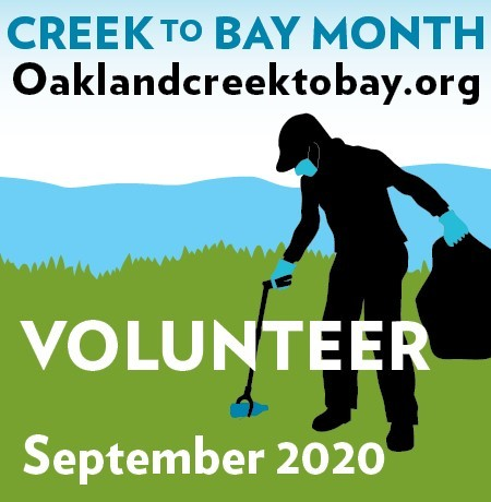 Oakland Creek to Bay 2020 thumbnail image Image